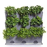 Minigarden Vertical 1 Set für 9 Pflanzen, erweiterbarer vertikaler Garten im Baukastensystem, freistehend am Boden aufstellbar oder zur Wandmontage (Grau)